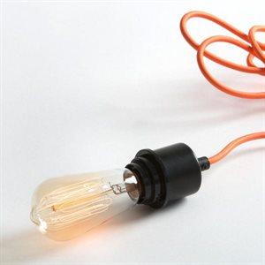 Ampoule format A19, 60 watts, 2400K